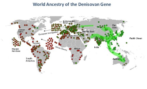 The Denisovan Gene